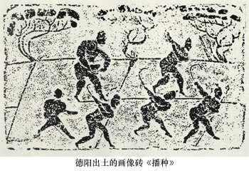 稻文化对中华文化的贡献